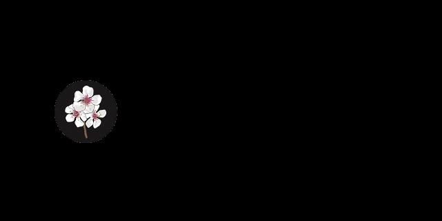 internet-sense-first-logo